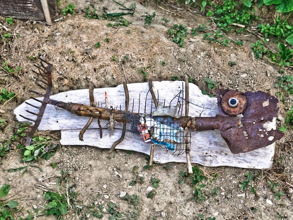 colocius-opera-pesce-fossile