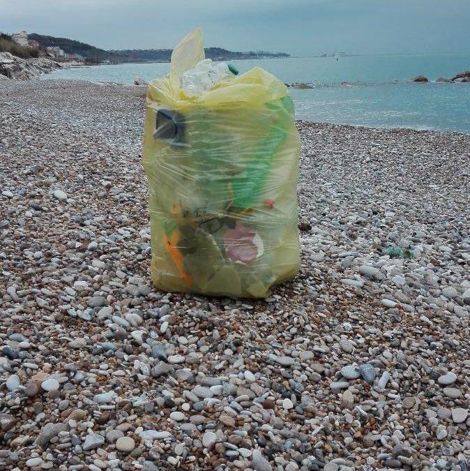 raccolta plastica in solitaria